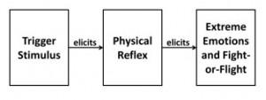 Neural Repatterning Technique (NRT) – Misophonia Treatment